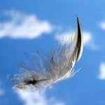 Lite As A Feather..