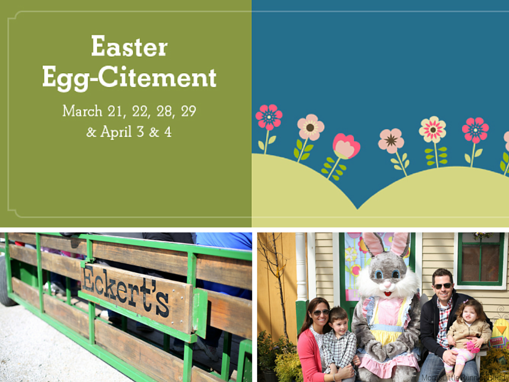 Eckert's Egg-citement