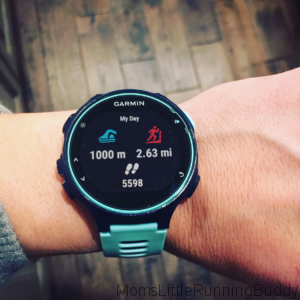 Garmin 735XT Review